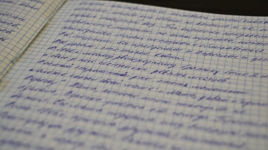 Дневник Клары Никитиной.