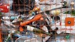 Кабмин поможет регионам перейти нановый вид оплаты вывоза отходов
