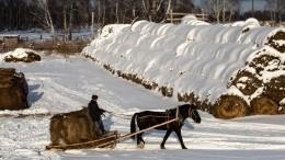 Крестьянский кроссворд: казацкое поселение излак Хрущева