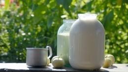 Псковская школьница получила грант напроизводство молочной продукции