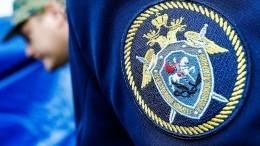 СКпроводит проверку инцидента свозгоранием всамарской колонии