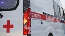 Атака паразитов: «ленточные черви» могут грозить жителям всего Ульяновска
