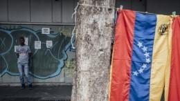 ВГермании назвали признание Гуайдо нарушением международного права