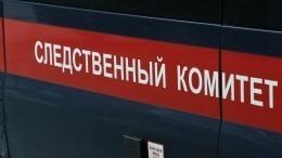 ВСледственном комитете прокомментировали инцидент вдетском саду Златоуста
