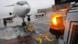 Бесхозная сумка стала причиной эвакуации пассажиров рейса Кемерово— Москва