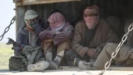 Видео: более 500 боевиков ИГ* сдались вСирии