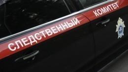 СКподтвердил предъявление обвинения Арашукову-старшему вхищениях