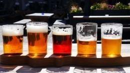 Фильтрованное пиво опасно для здоровья— ученые