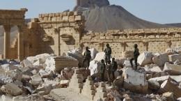 Террористы обстреляли сирийскую деревню, есть жертвы