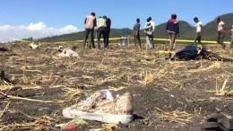 Появилось первое видео сместа авиакатастрофы вЭфиопии