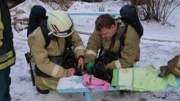 Кадры чудесного спасения: Сотрудники МЧС откачали кота, пострадавшего впожаре