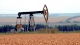 ВРоссии впервые оценили стоимость всей нефти встране