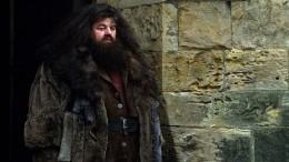 Хагрид наколесах: Звезда фильмов оГарри Поттере оказался винвалидной коляске