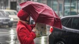 Уровень «желтый»: Гидрометцентр предупредил обопасной погоде вПетербурге