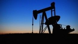 Министр нефти Венесуэлы вапреле посетит Россию