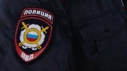 МВД запустило поэтический флешмоб «Пушкин объединяет»