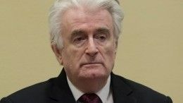 Приговор Караджичу вызвал сомнения вМИД РФ