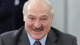 «Как будто съели мышь или крысу»: Лукашенко рассмешил биатлонистов вБрестской области