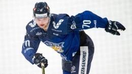 Хоккеиста «Салавата» раскритиковали зафото субитым лосем
