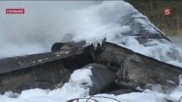 Ошибка пилота? ВГермании расследуют причины крушения частного самолета