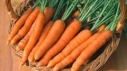Видеорецепт XIX века— как приготовить невероятно вкусную морковь под соусом