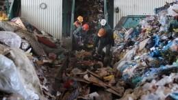 Мусору— бой! Экологи привлекают иностранных инвесторов кпереработке ТКО