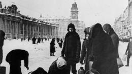 Новый проект посохранению памяти блокады обсудили вСанкт-Петербурге