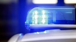 Видео: Полицейские открыли огонь помикроавтобусу вПетербурге после ДТП