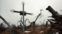 Названы российские регионы ссамым высоким инизким уровнем смертности