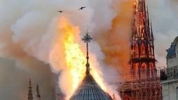 Названа предварительная причина пожара вСоборе Парижской Богоматери