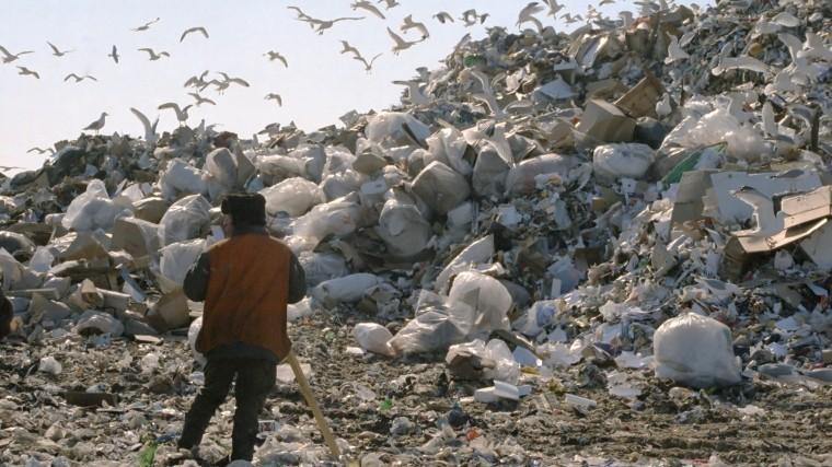 Глава РЭО неисключил отказа России отзахоронения мусора