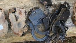 Прикованный кдереву скелет человека обнаружен под Москвой— фото (18+)