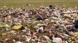 Национальный парк «Самарская лука» превратился всвалку— видео