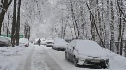 Сильнейший снегопад обрушился наТомскую область— видео