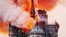 Установлен очаг возгорания всоборе Нотр-Дам деПари— видео