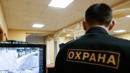 Видео: Охранник вуза вПушкине едва неубил беременную кошку наглазах устудентов