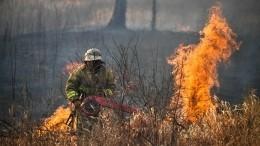 Видео: ВЗабайкалье начались выплаты пострадавшим из-за пожаров