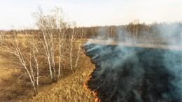 Видео: Более 20 тысяч гектаров леса горит вЗабайкалье
