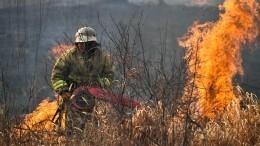 Видео: Общий ущерб отпожаров вЗабайкалье оценили вмиллиард рублей