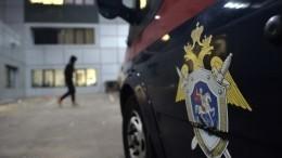 ВМоскве задержан подозреваемый впопытке изнасилования именитой спортсменки
