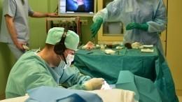 Ведущие хирурги мира обсудили методы лечения патологии кисти вПетербурге