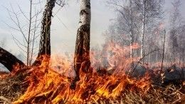 Природные пожары угрожают поселкам вИркутской области