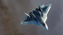 Путин заявил, что до2028 года будет закуплено 76 самолетов Су-57— видео