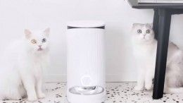 Xiaomi создала «умную» кормушку для кошек исобак