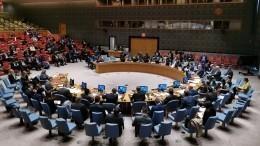 ООН проведет экстренное заседание из-за принятия закона обукраинском языке