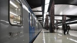 Три поезда спассажирами застряли наСолнцевской линии московского метро