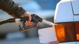 Тревогу оросте цен набензин вправительстве назвали преждевременной