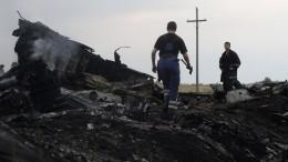 Причастность Украины ккрушению MH17 допустили вНидерландах