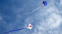 Аэростаты ияркие воздушные змеи внебе: Россия переходит нацифру