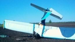 ВУльяновской области разбился легкомоторный самолет